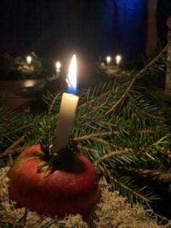 God Jul och Gott Nytt År önskar Uppsala Waldorfskola